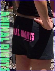 KC shorts